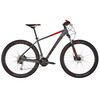 Cube Analog MTB Hardtail grey